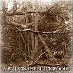 A Walk in the Blackwoods