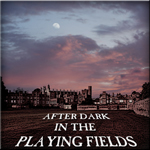 After Dark in the Playing Fields