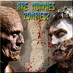 Are Mummies Zombies